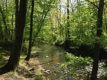 """""""Shabakunk Creek in Colonial Lake Park, Lawrence Township, New Jersey"""" by Famartin. CC BY-SA 3.0 via Commons."""